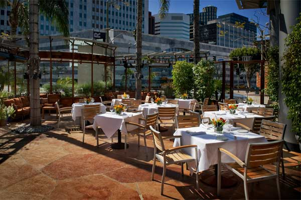 Napa Valley Grille Westwood Urban Dining Guide