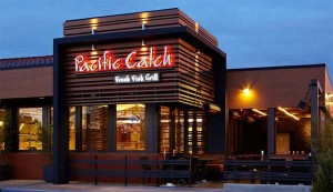 Pacific Catch - Campbell