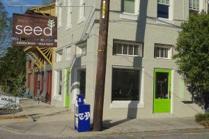Seed - New Orleans